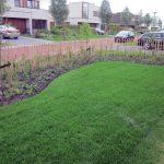 Tuinrenovatie gazon