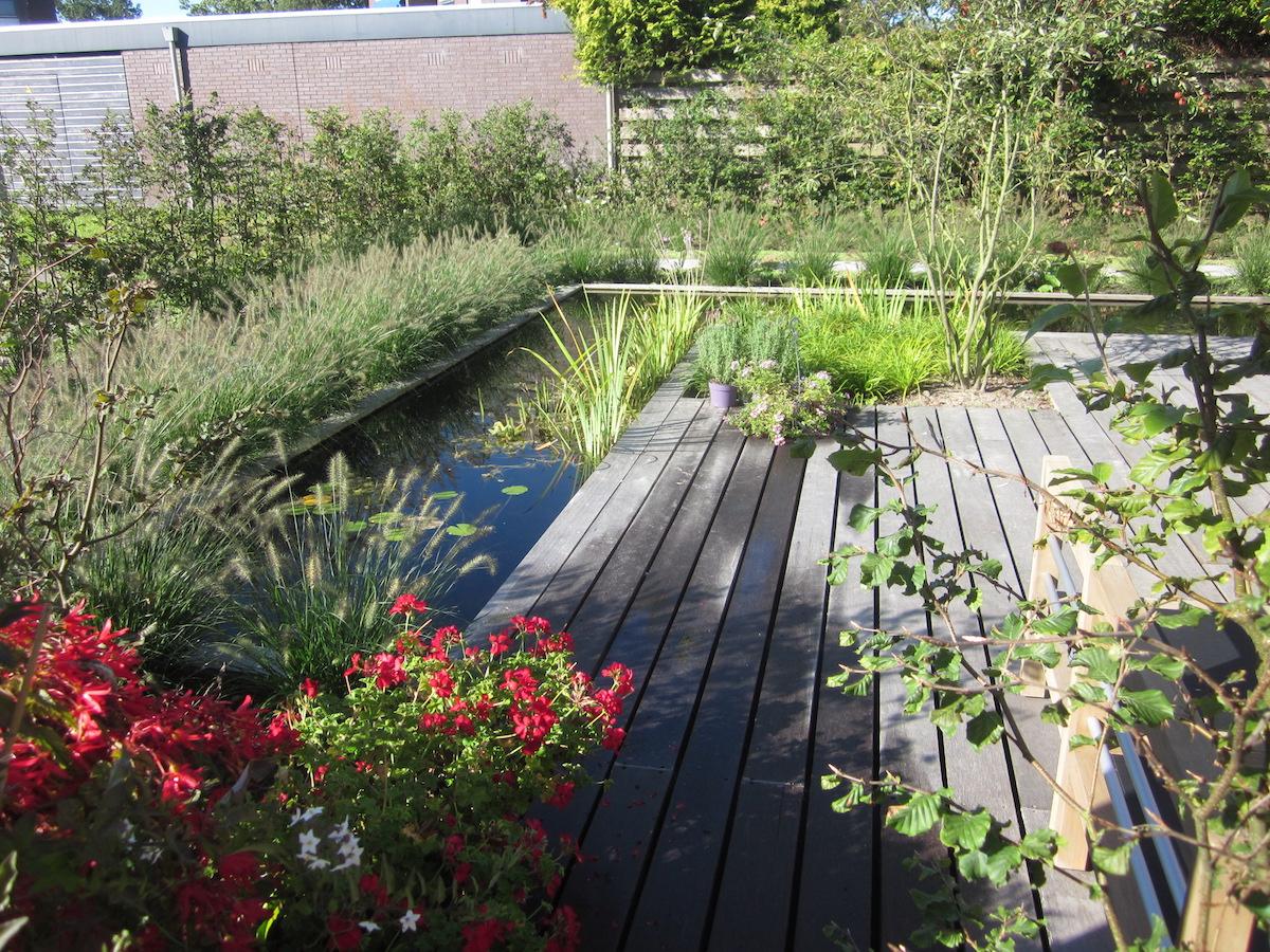 Hovenier van dijk tuinen groningen renovatie tuin en for Tuin en vijver