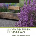 Tuinontwerp Van Dijk Tuinen Groningen